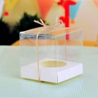 hop-nhua-trong-suot-transparent-plastic-boxes-13