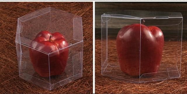 Hộp nhựa lục giác PET