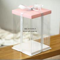 boxes-PET-PP-PVC-PS-Hop-nhua-dung-banh-kem-tran-trong-suot-va-nap-giay (17)_SPK Packaging
