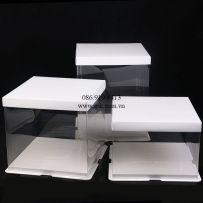 boxes-PET-PP-PVC-PS-Hop-nhua-dung-banh-kem-tran-trong-suot-va-nap-giay (19)_SPK Packaging