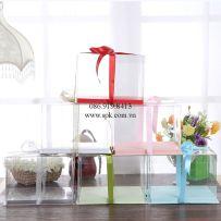 boxes-PET-PP-PVC-PS-Hop-nhua-dung-banh-kem-tran-trong-suot-va-nap-giay (8)_SPK Packaging