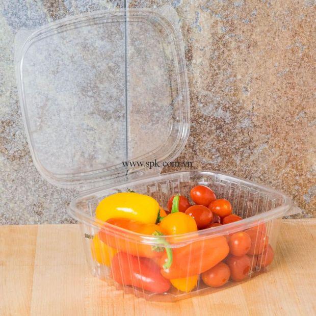 a-Hộp-nhựa-đựng-thực-phẩm-bảo-quản-an-toàn-SPK-Packaging (14)-hop-nhua-trong-suot-PET-PVC-PP