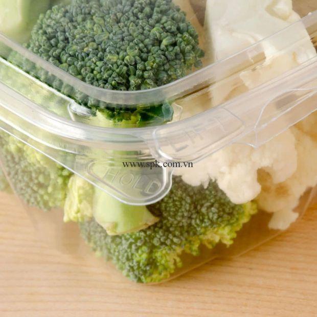 a-Hộp-nhựa-đựng-thực-phẩm-bảo-quản-an-toàn-SPK-Packaging (2)-hop-nhua-trong-suot-PET-PVC-PP