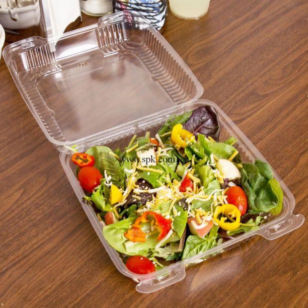 a-Hộp-nhựa-đựng-thực-phẩm-bảo-quản-an-toàn-SPK-Packaging (20)-hop-nhua-trong-suot-PET-PVC-PP