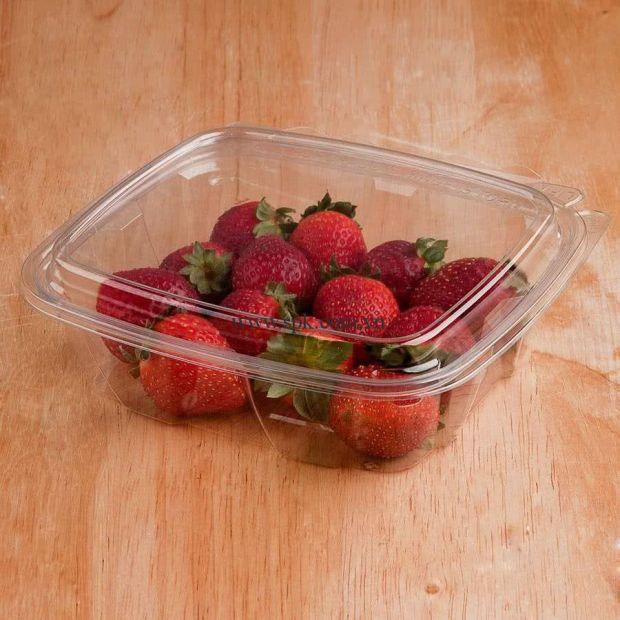 a-Hộp-nhựa-đựng-thực-phẩm-bảo-quản-an-toàn-SPK-Packaging (27)-hop-nhua-trong-suot-PET-PVC-PP