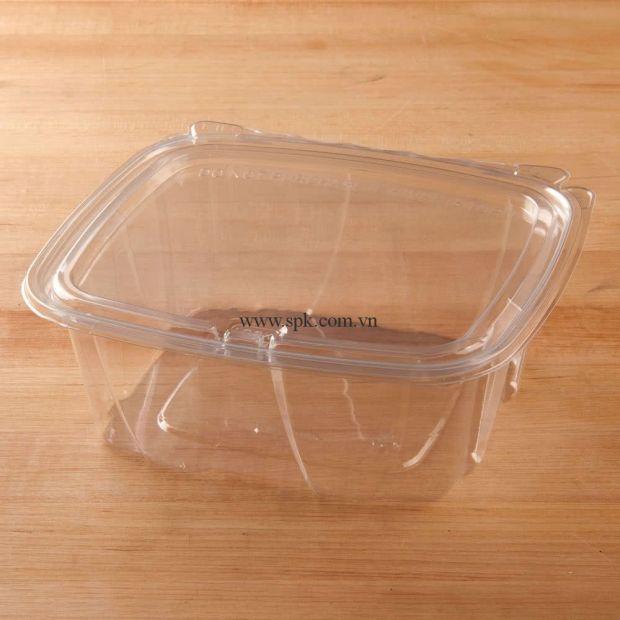 a-Hộp-nhựa-đựng-thực-phẩm-bảo-quản-an-toàn-SPK-Packaging (31)-hop-nhua-trong-suot-PET-PVC-PP