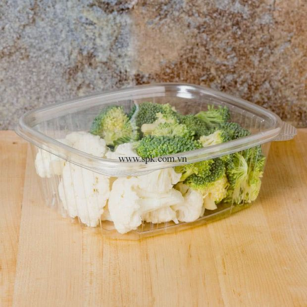 a-Hộp-nhựa-đựng-thực-phẩm-bảo-quản-an-toàn-SPK-Packaging (7)-hop-nhua-trong-suot-PET-PVC-PP
