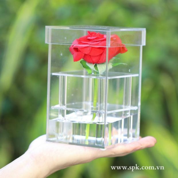 hộp-đựng-hoa-hồng-trong-suôt-bằng-nhựa-acrylic-pet-chất-lượng-cao-spk-packaging