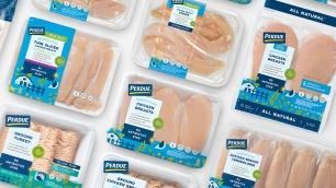 bao-bi-thuc-pham-dung-thit-ga-tuoi-perdue-packaging-rebrand (2)